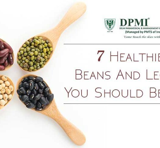 7 Healthiest Beans and Legumes you should be Eating