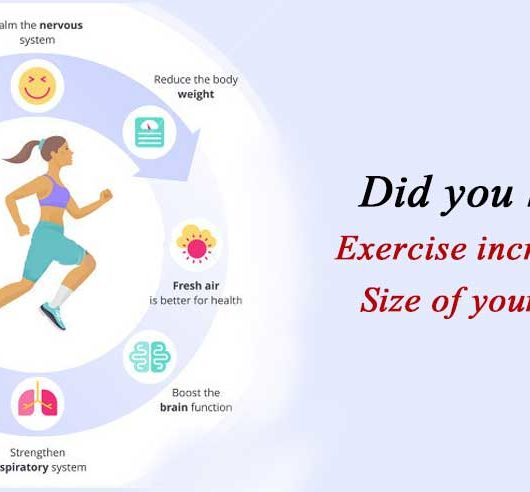 Exercise Increases the Size of your Brain