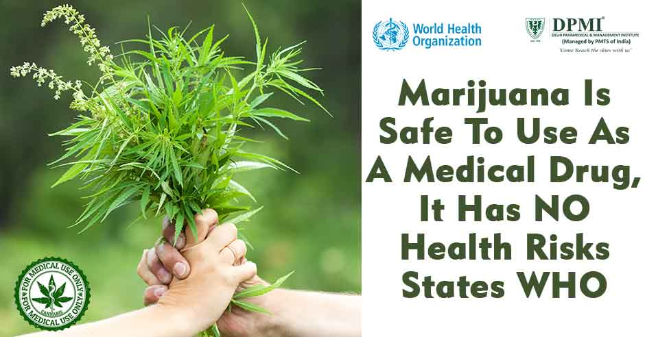Marijuana Is Safe To Use As A Medical Drug, It Has NO Health Risks States WHO